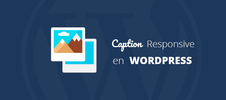 Caption adaptable en WordPress